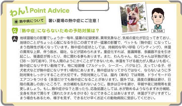ペット「熱中症」にならないための予防対策