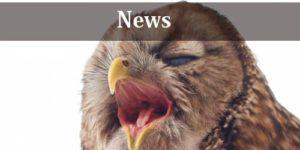 山口県山口市の動物病院 西京の森どうぶつ病院のニュース